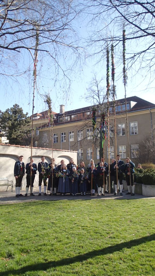 Speckbacher Schützen Hall / Palmsonntag 2016 / Zum Vergrößern auf das Bild klicken