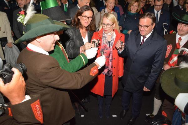 Hans Gregoritsch / Eröffnung Ministerrat / Zum Vergrößern auf das Bild klicken